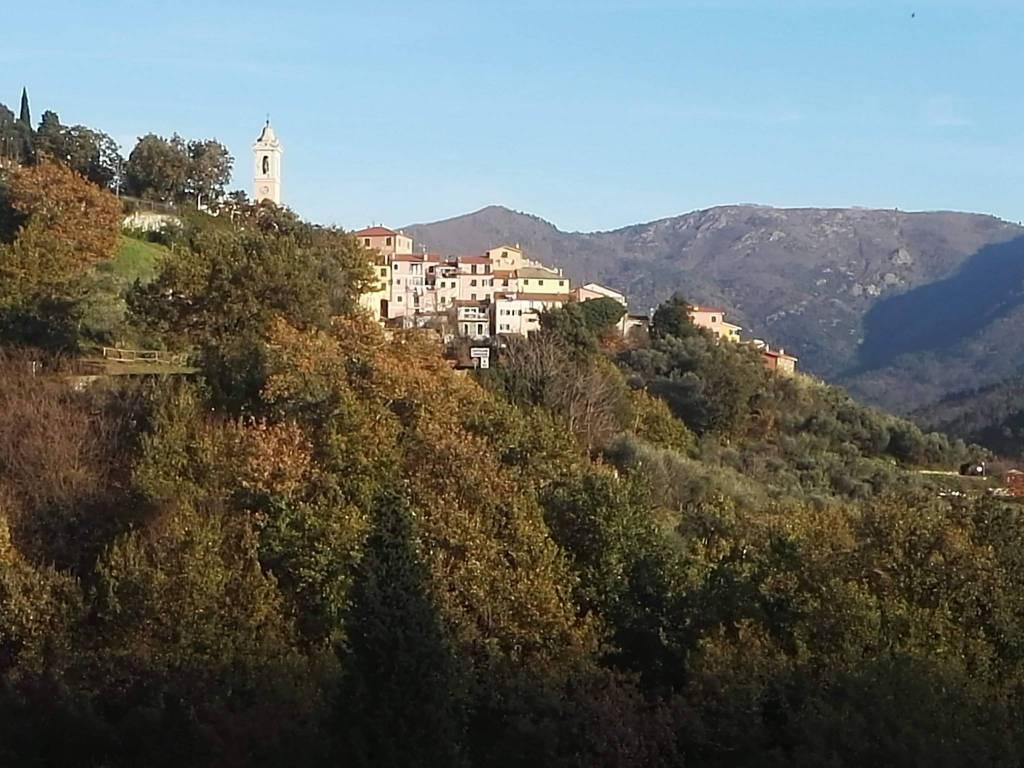 Casale, da ristrutturare, 233 mq, Castiglione Chiavarese